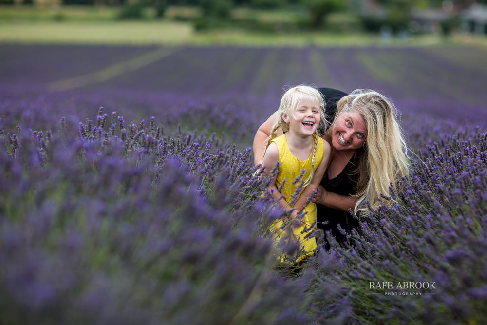 hitchin lavender farm family photoshoot hertfordshire-1019.jpg