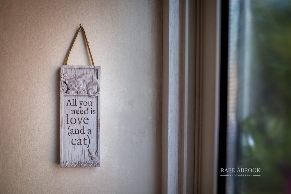 wedding photographer hertfordshire rafe abrook rectory farm cambridge-1001.jpg