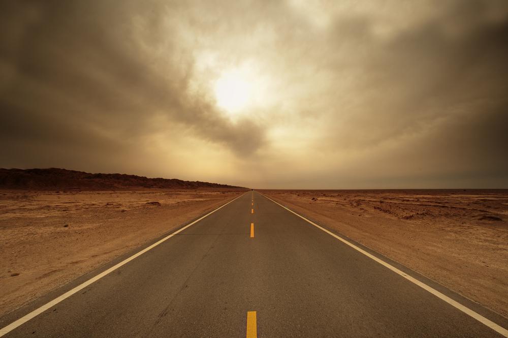 Silk Road #8  by Johnathan Kos-Read