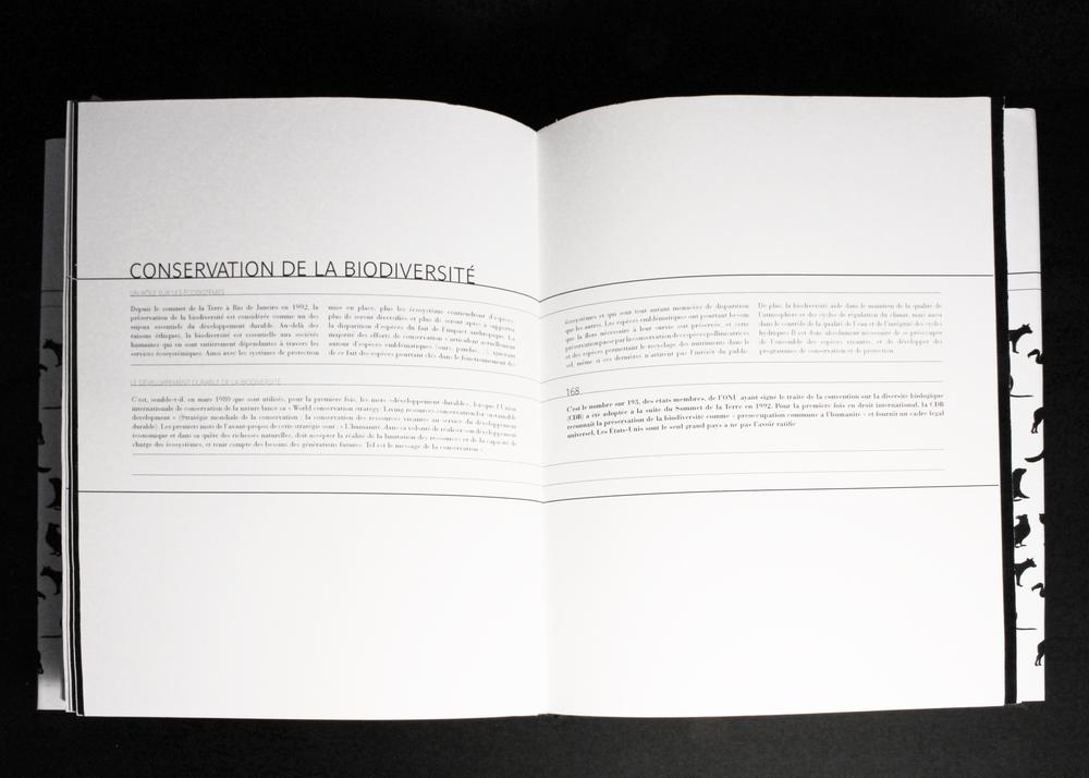 45 copie.jpg