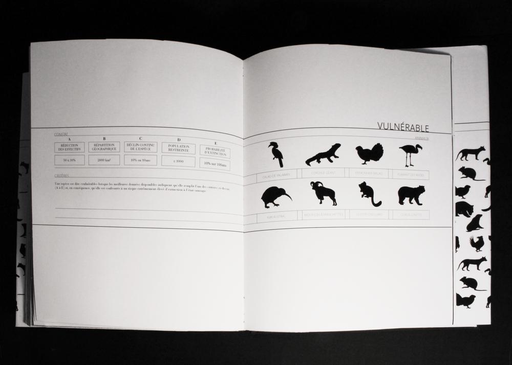 50 copie.jpg