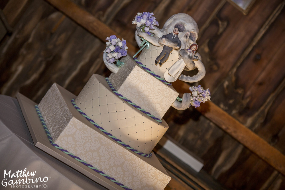 2015Colleen_Chris_Wedding_Matthew_Gambino_Photography250.JPG