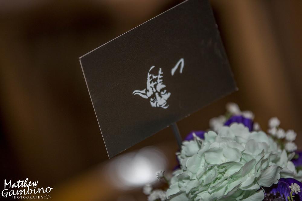2015Colleen_Chris_Wedding_Matthew_Gambino_Photography291.JPG