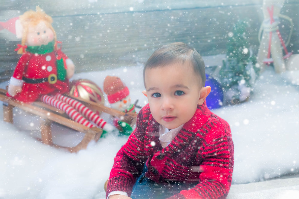 Holiday_Pictures_Matthew_Gambino_Photography1.jpg