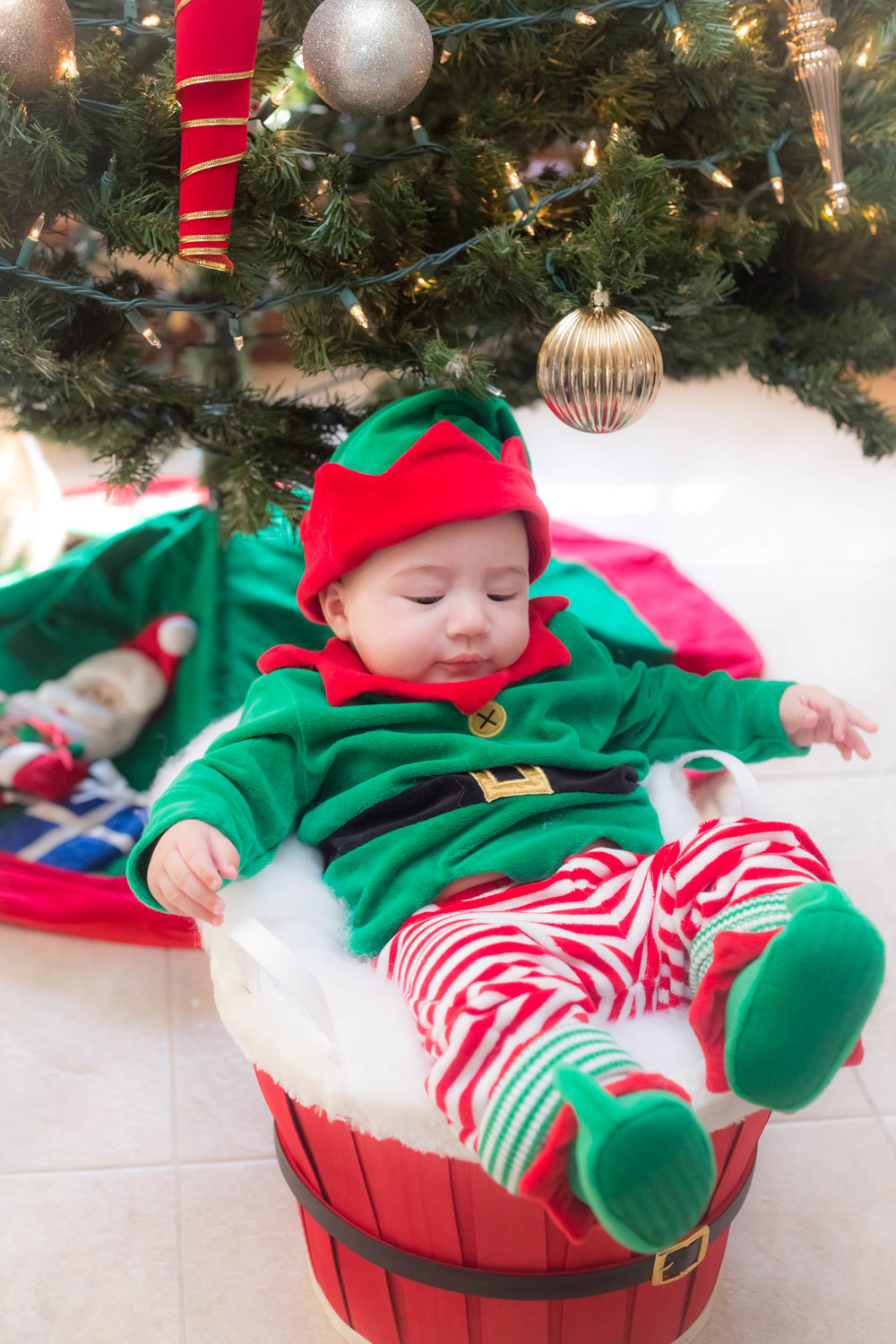 Holiday_Pictures_Matthew_Gambino_Photography14.jpg