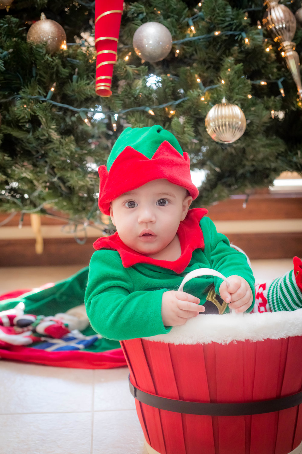 Holiday_Pictures_Matthew_Gambino_Photography18.jpg