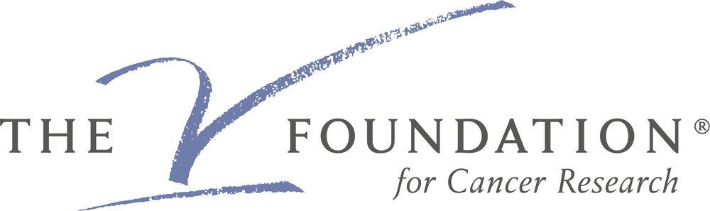 V Foundation Color Logo.jpg