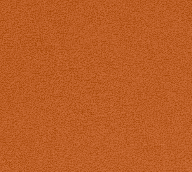 Orange 1587