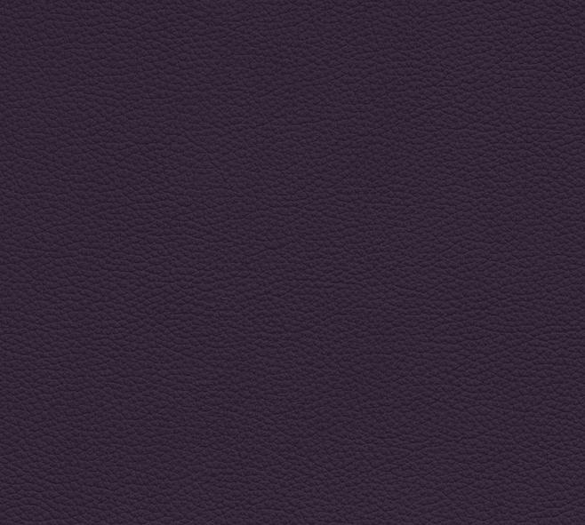 Purple 1593