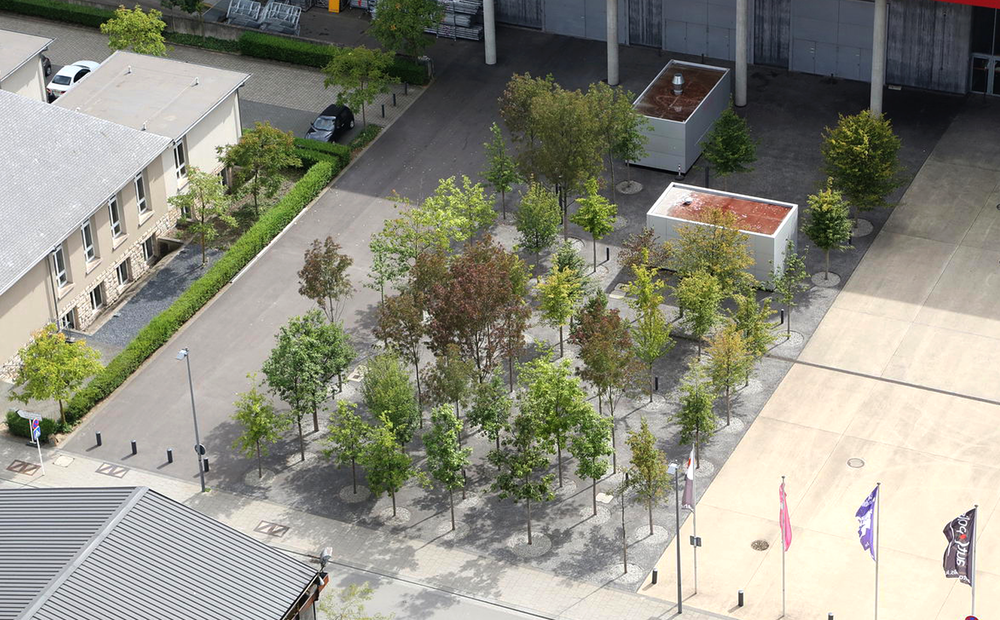 "12.00          To enhance the barren concrete surface in front of the concert hall two densely planted forecourts were created. The dense tree planting offers a pleasant atmosphere with an attractive seasonal change in the urban environment of Esch-Belval.    The attractive surface is unexpected in this context and delights the visitor especially in wet weather, typical for Luxembourg.        Design team lead by Michel Desvigne Paysagiste, Paris         Normal   0       21       false   false   false     FR   X-NONE   X-NONE                                        MicrosoftInternetExplorer4                                                                                                                                                                                                                                                                                                                                            /* Style Definitions */  table.MsoNormalTable 	{mso-style-name:""Table Normal""; 	mso-tstyle-rowband-size:0; 	mso-tstyle-colband-size:0; 	mso-style-noshow:yes; 	mso-style-priority:99; 	mso-style-qformat:yes; 	mso-style-parent:""""; 	mso-padding-alt:0cm 5.4pt 0cm 5.4pt; 	mso-para-margin:0cm; 	mso-para-margin-bottom:.0001pt; 	mso-pagination:widow-orphan; 	font-size:11.0pt; 	font-family:""Calibri"",""sans-serif""; 	mso-ascii-font-family:Calibri; 	mso-ascii-theme-font:minor-latin; 	mso-fareast-font-family:""Times New Roman""; 	mso-fareast-theme-font:minor-fareast; 	mso-hansi-font-family:Calibri; 	mso-hansi-theme-font:minor-latin; 	mso-bidi-font-family:""Times New Roman""; 	mso-bidi-theme-font:minor-bidi;}"