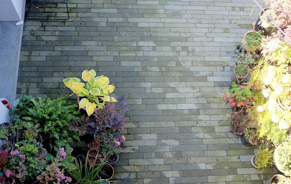 Terrasse fcmc