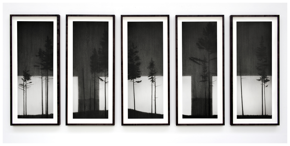 Multiplex. 2011.  Charcoal on paper. 170x415cm.