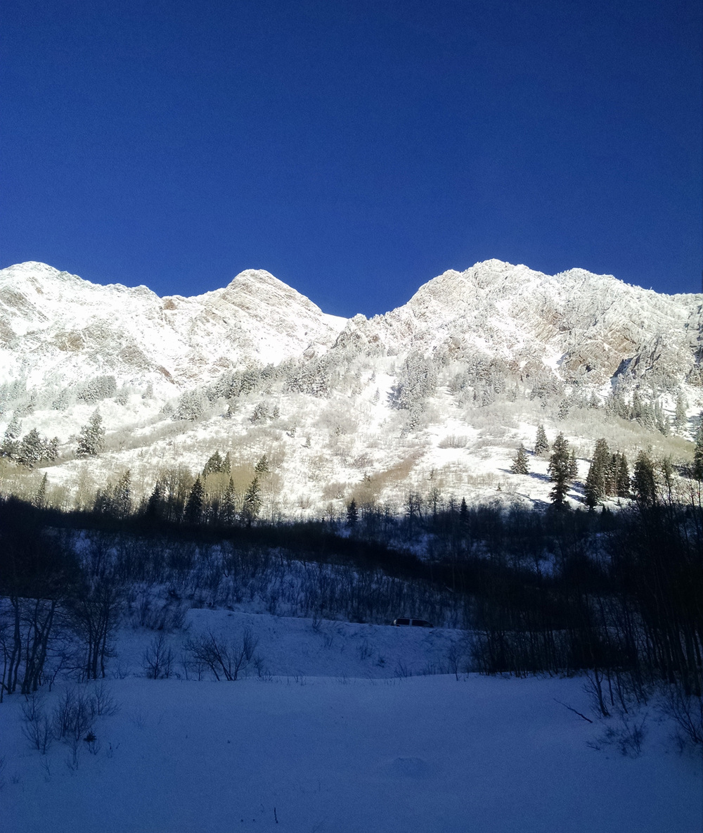 Morning_Little Cottonwood canyon_Utah_.jpg