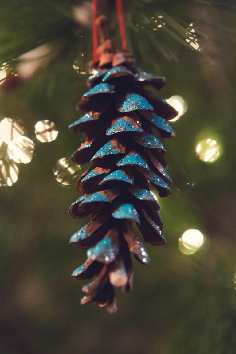 PineCone_Blue.jpg
