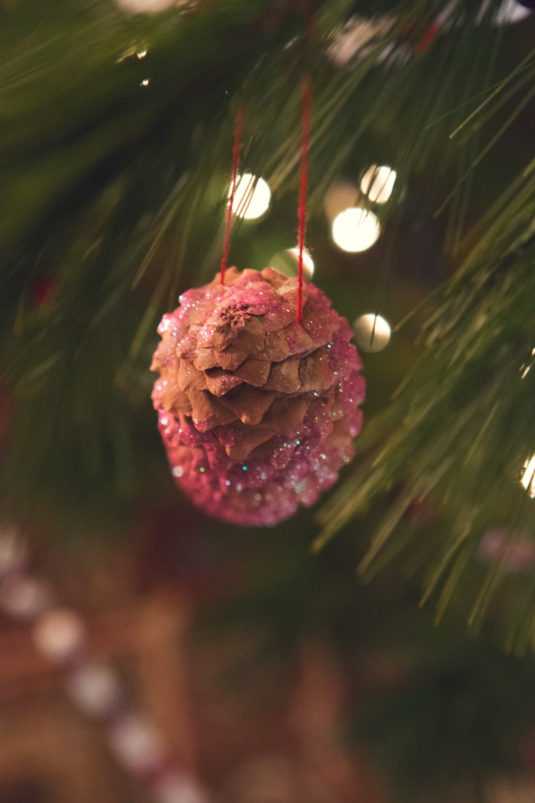PineCone_Pink.jpg