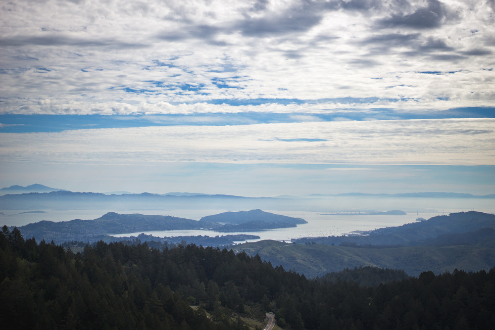 View of the San Francisco Bay from Mount Tam