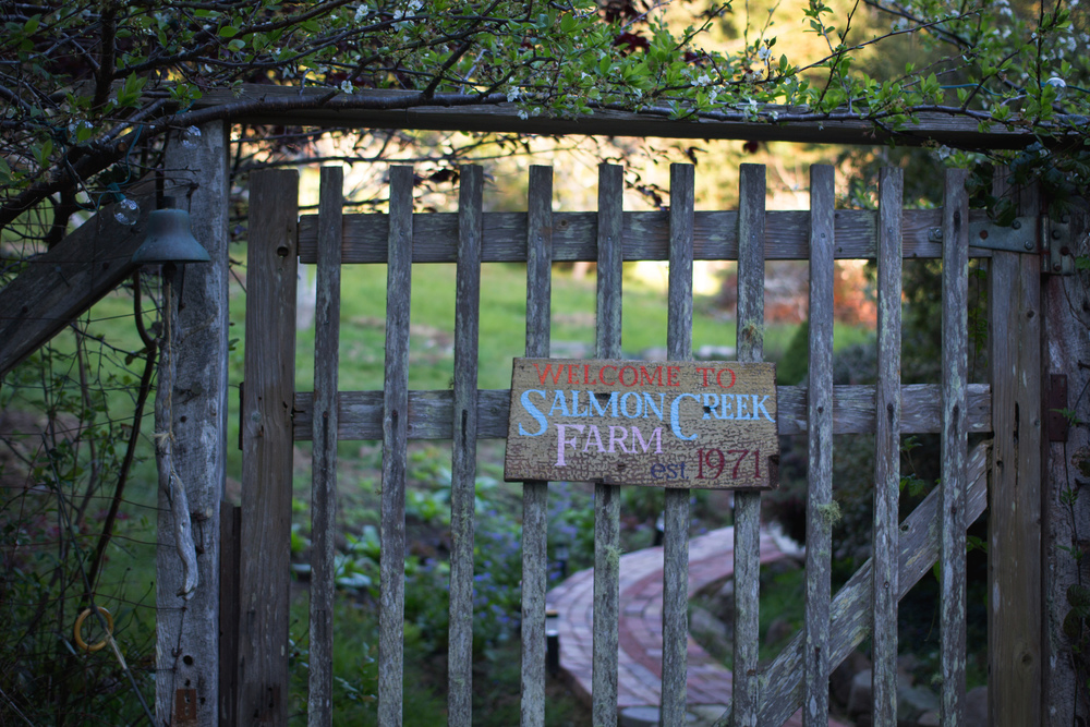 The gate to Salmon Creek Farm