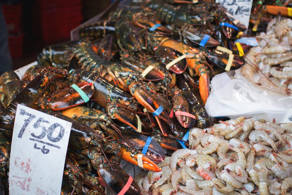 Fresh catch in Chinatown