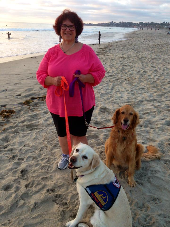 Susan with her rescue Golden Retriever,  GAIA and Tami's CCI Hearing Dog TARA