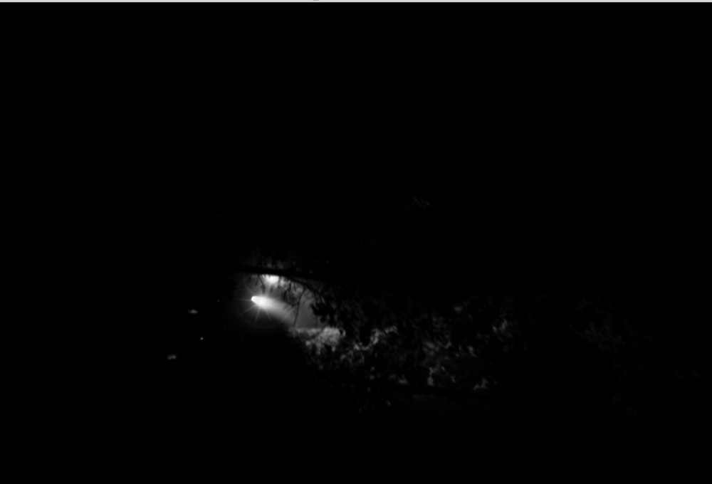Screen Shot 2014-11-23 at 1.53.26 PM.jpg
