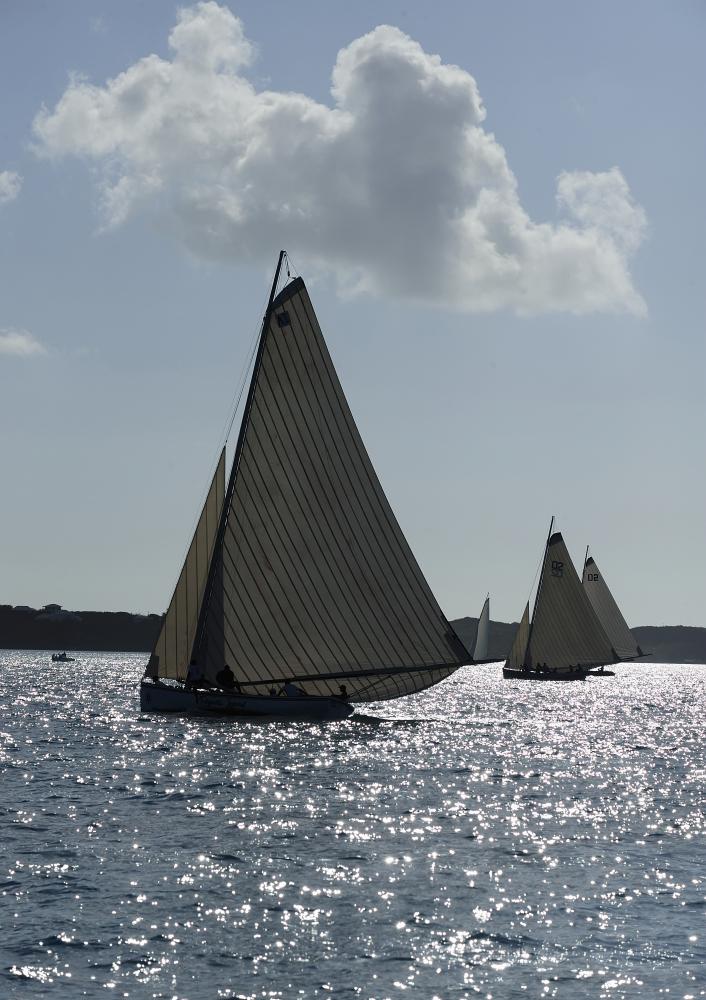 Sailboat SPB8380.JPG