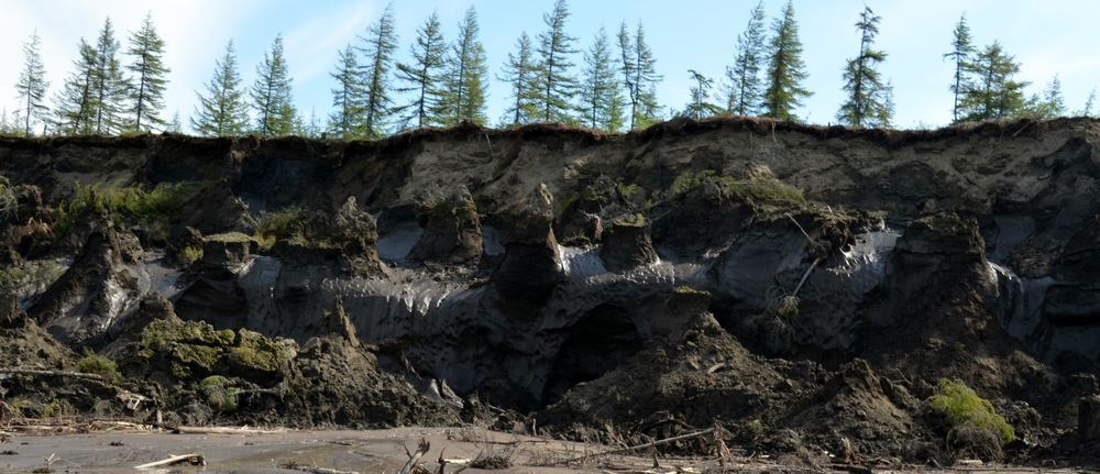 Duvannyi Yar - an eroding river bank along the Kolyma where yedoma exposes ancient bones.