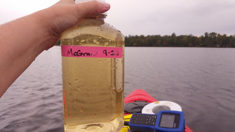 Water sample from a colored lake in northern Wisconsin