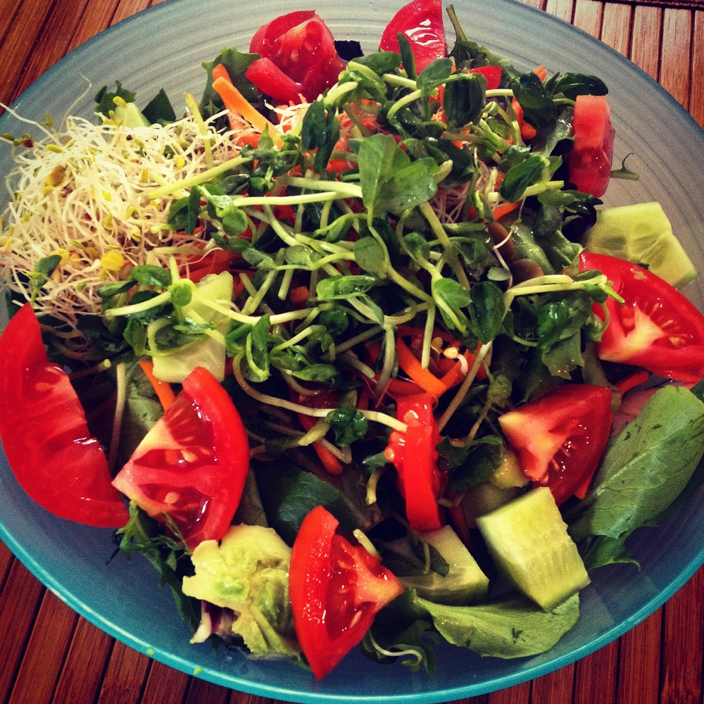 "A variety of sprouts, including my favorite ""Sunnies"" front and center, spice up this everyday salad."