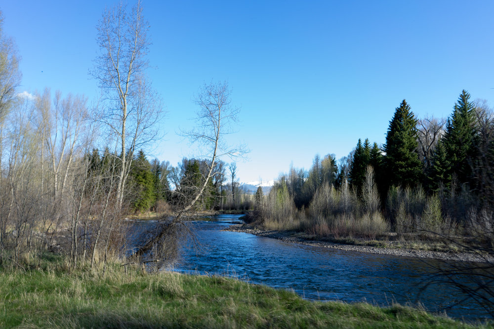 blueriver-76.jpg