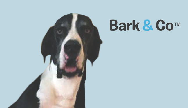Matt Meeker, Founder & CEO<br>Branded Canine Commerce