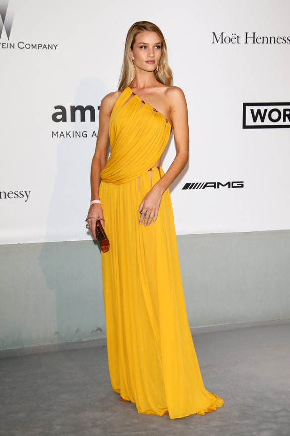 Rosie Huntington-Whiteley in Emilio Pucci at the amfAR Gala