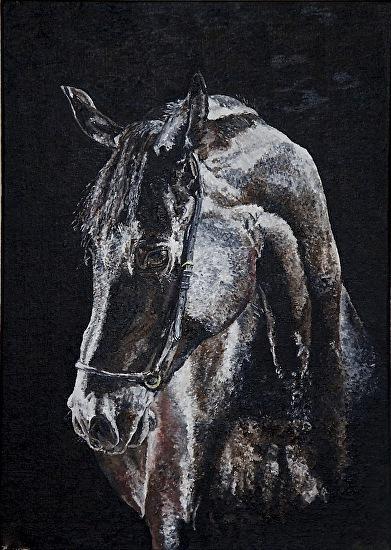 night-horse.jpg