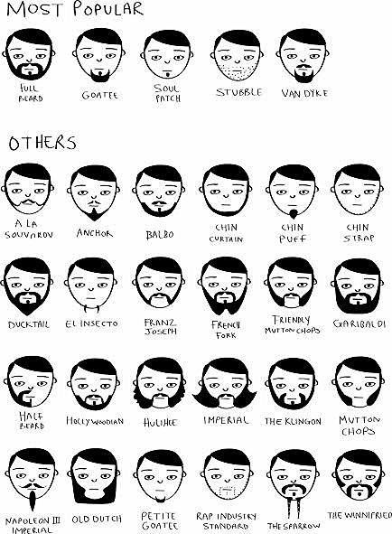 beardology chart