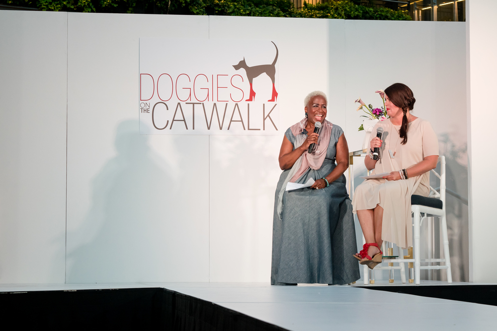 Doggies on the Catwalk