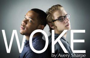 WOKE-show-image-500x324-300x194.jpg
