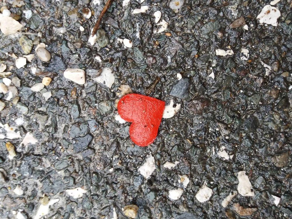 heart-2144415_1920 ameliniumo.jpg