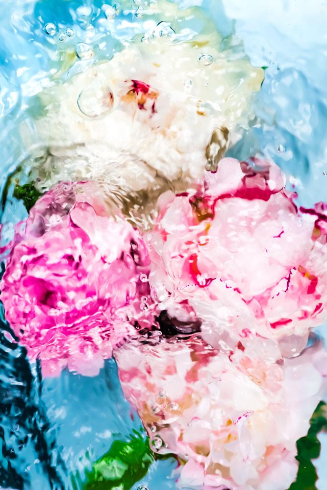 Floral Pink & Blue Print © Jessica Kenyon Studio