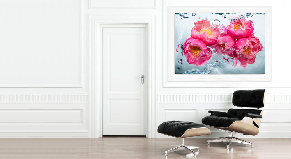Pink Peony photography by Jessica Kenyon featured in neoclassical interior