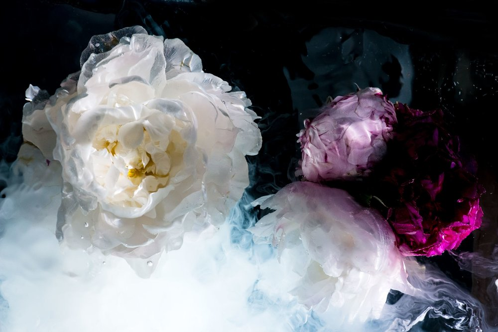 dark-floral-1.jpg