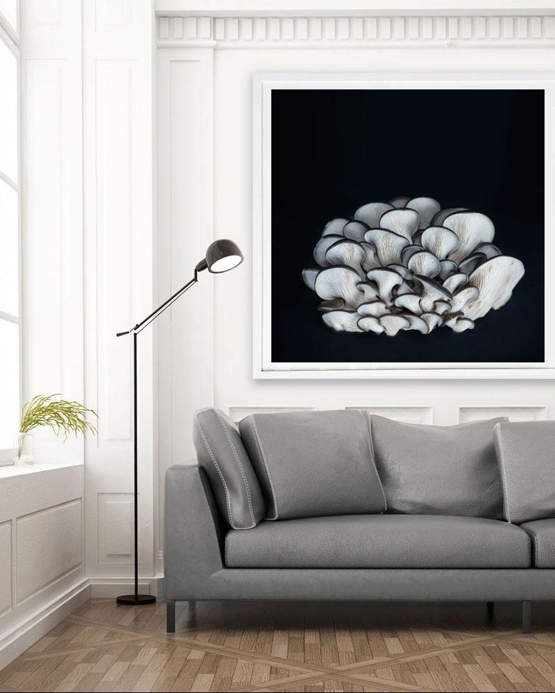 Mushroom Print by Jessica Kenyon