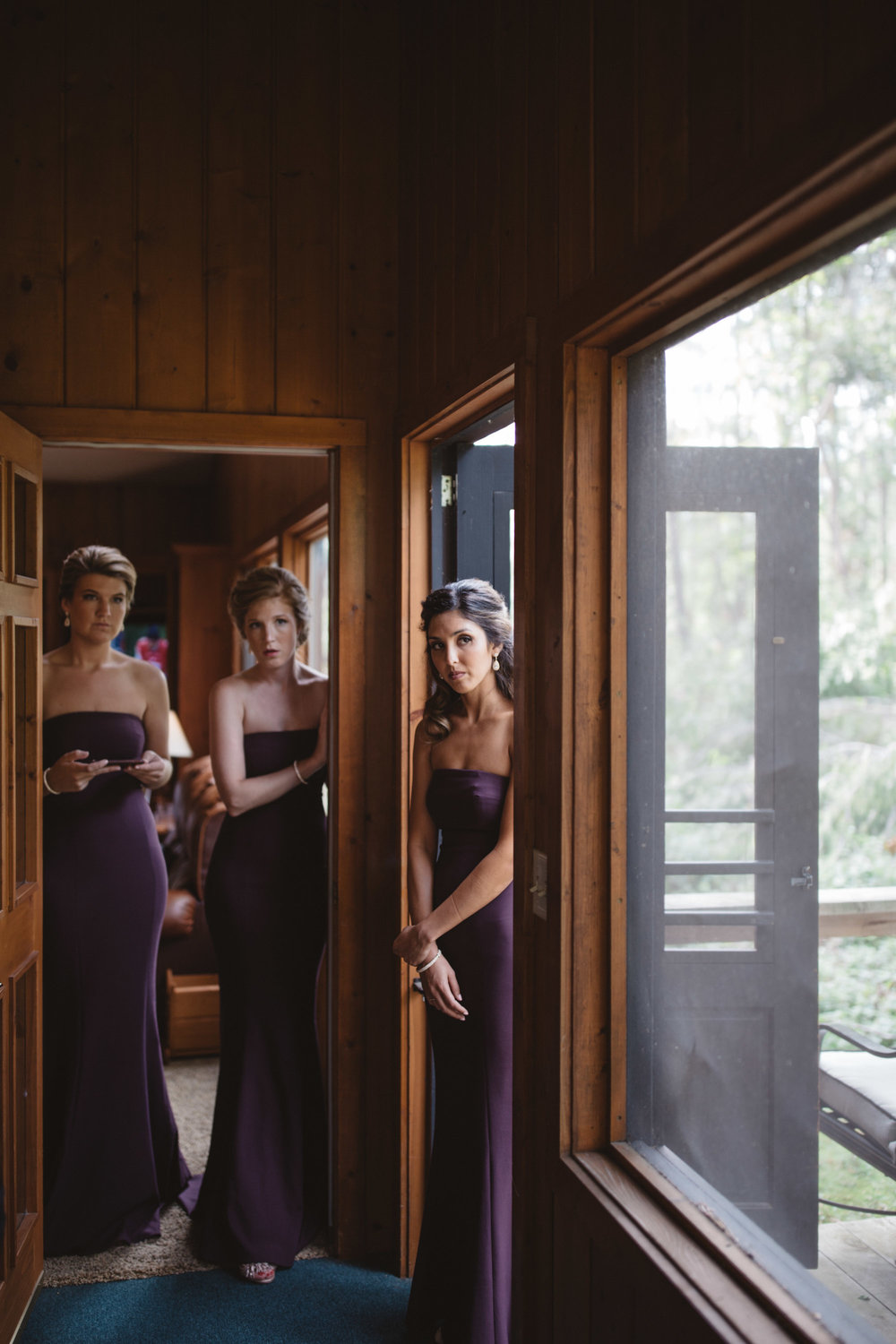 Stunning bridesmaids in purple wedding dresses. Photography by Britt DeZeeuw, Grand View Lodge wedding photographer.