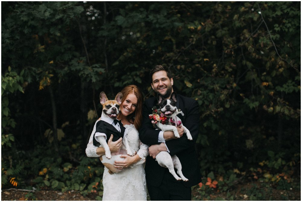 Bride and groom with french bulldogs at cabin wedding on Gull Lake