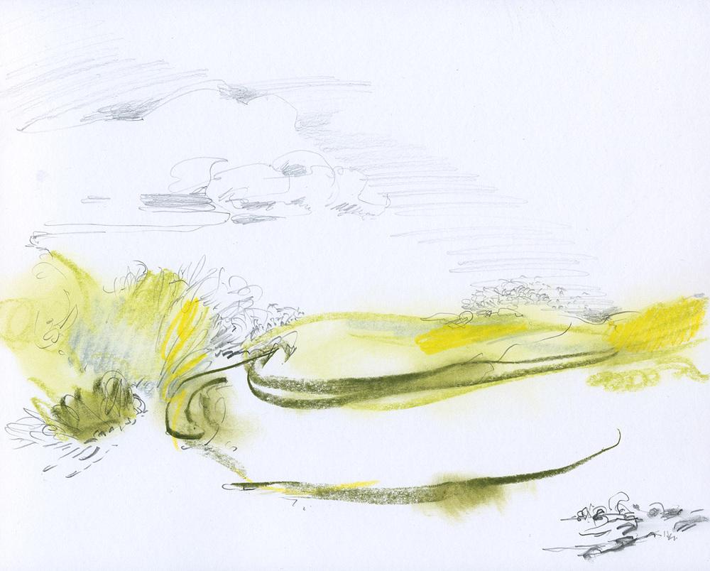 Olive-lemon grass