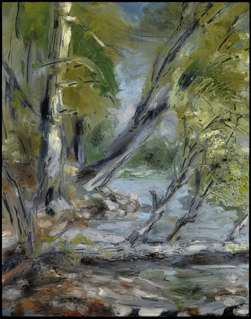 Willow in the water, Jamaica Pond