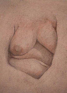 Figure Study: Heart