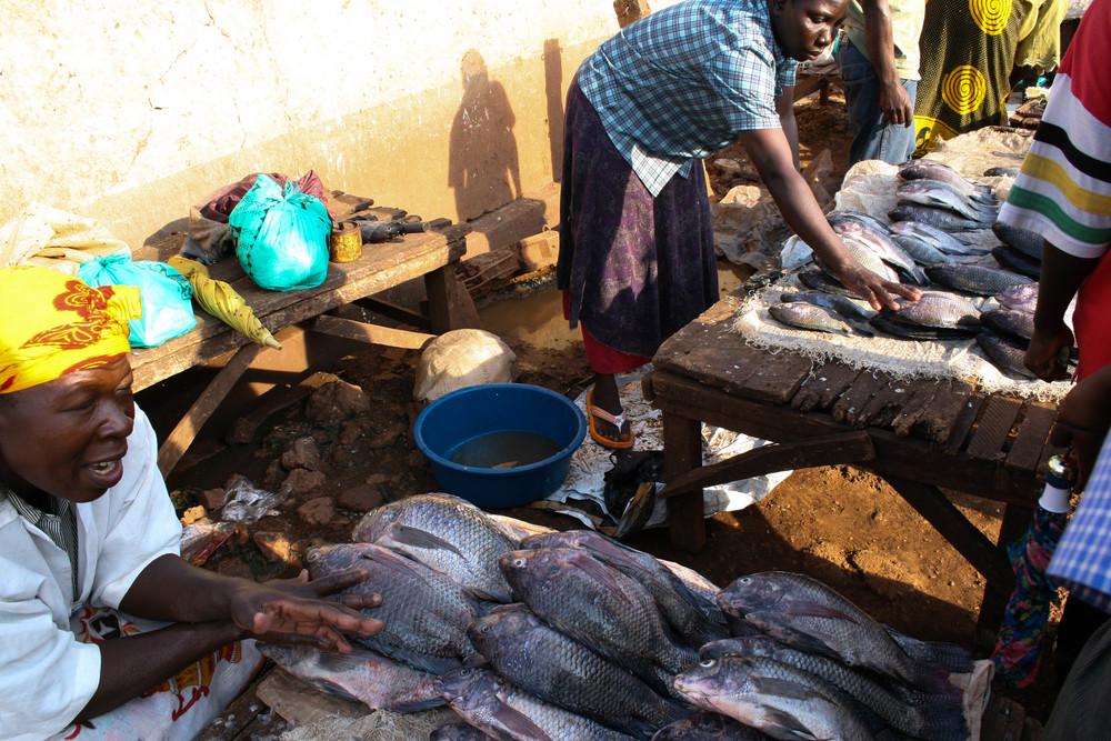 uganda_-5.jpg