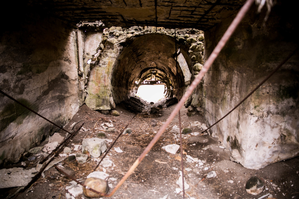 betty bunker