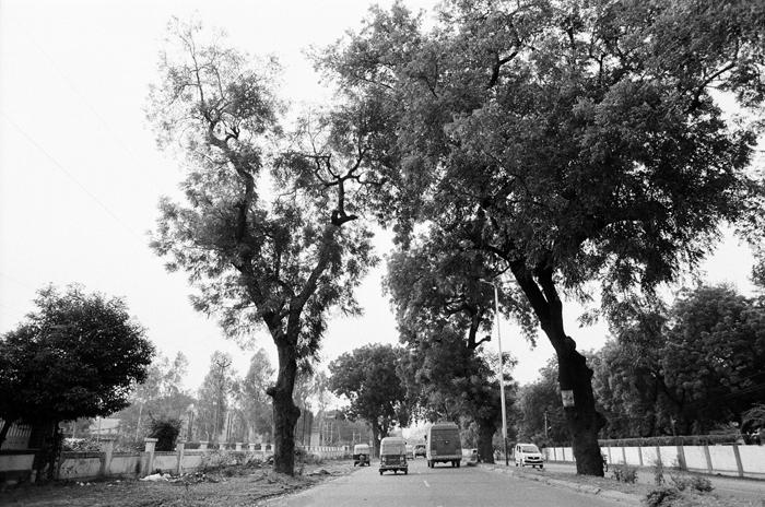 india0011.jpg