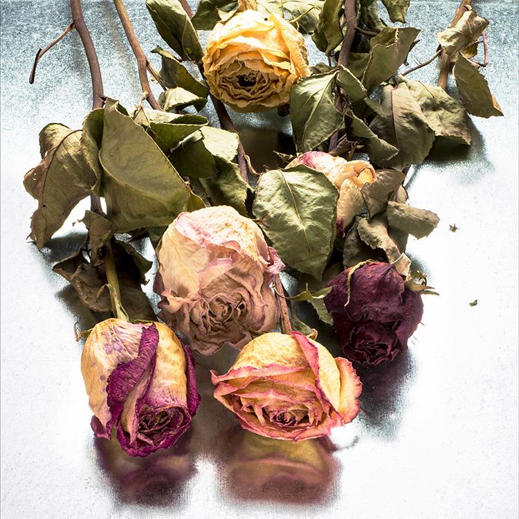 "John Retallack, ""Not Forgotten"", Photograph, $300"