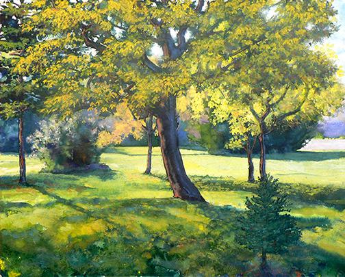 """Robert Heischman,  Small Spruce,  Gouache , 16""""x 20"""" $800"""